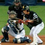 少年野球での送りバントのやり方とは?試合で成功するコツや仕方!