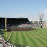 野球場の人工芝と天然芝の違いとは?選手への負担やスパイクの比較!