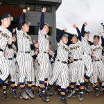 2017帝京第五高校野球部の成績!メンバーや出身中学や監督とは?